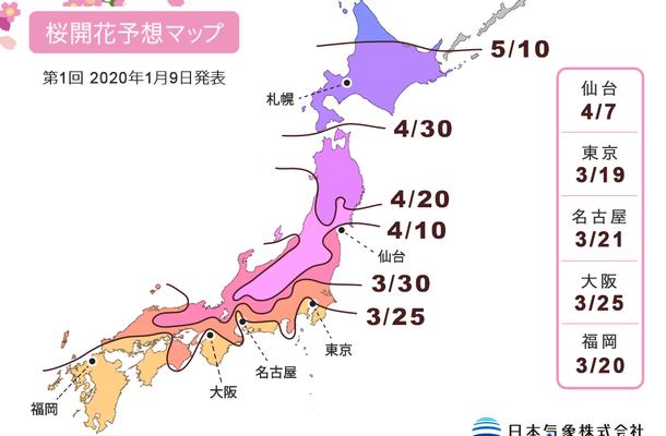 Sakura Forecast 2020 – bollettino dei fiori di ciliegio